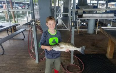 Texoma Striper Report July 28, 2017