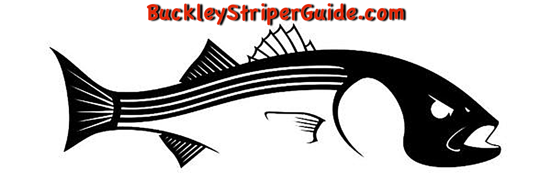 How to Catch Striper