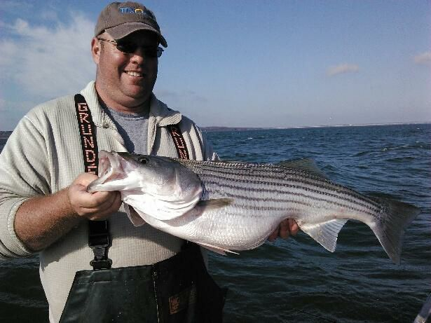 Lake texoma striped bass fishing report mid summer 2017 for Striper fishing lake texoma