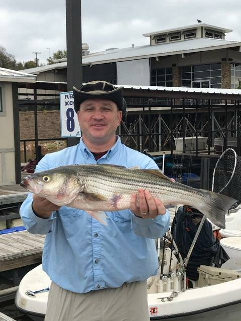 Lake texoma striper fishing report buckley striper guide for Fishing guides on lake texoma
