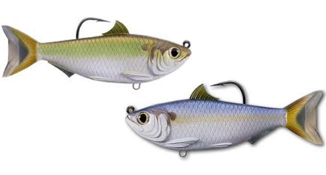 Best time for striper fishing in texas striper fish for Best fishing times texas